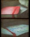 moleskine notebook red paper handwritten handwriting book ebooks photography help